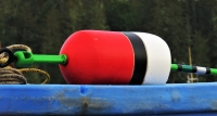 Red_and_Black_Buoy_28329.JPG