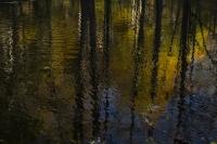 Autumn2C_Millerton_NY.jpg