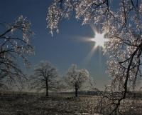 Winter_Ice.jpg
