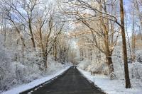 winter_DSC_2906.jpg