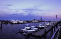 Provincetown_Pier_DawnDingee.jpg