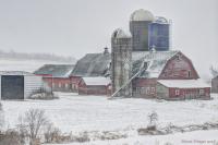 Homestead_Farm_dawndingee.jpg