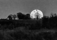Moon_Geese_B_W_7565.jpg