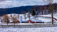 Winter_Farm_by_Bert_Schmitz.jpg