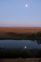 Full_Moon_in_Sea_Island_Marsh.jpg