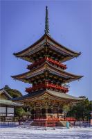 Building2C_Japan_by_Bert_Schmitz.jpg