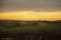Sunrise_in_Provincetown_Ddingee.jpg