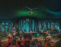 Giffords_Circus-.jpg