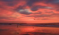 Sunrise_at_OOB__Jane_R.jpg